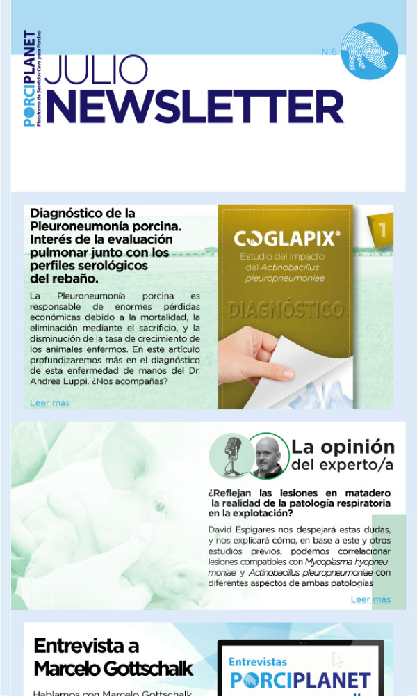 Newsletter-6_600x1000