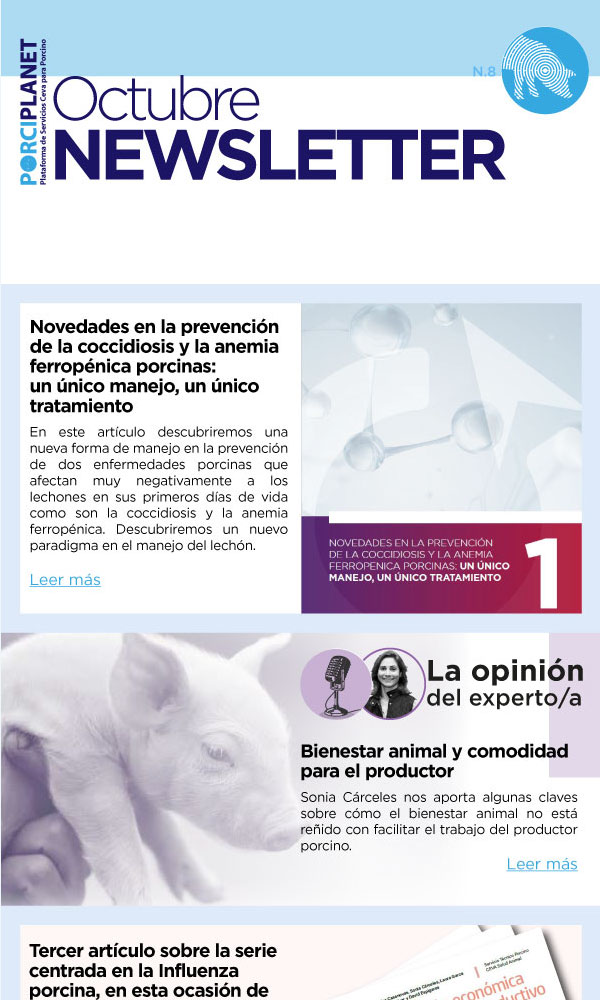 Newsletter-8-Octubre_600x1000