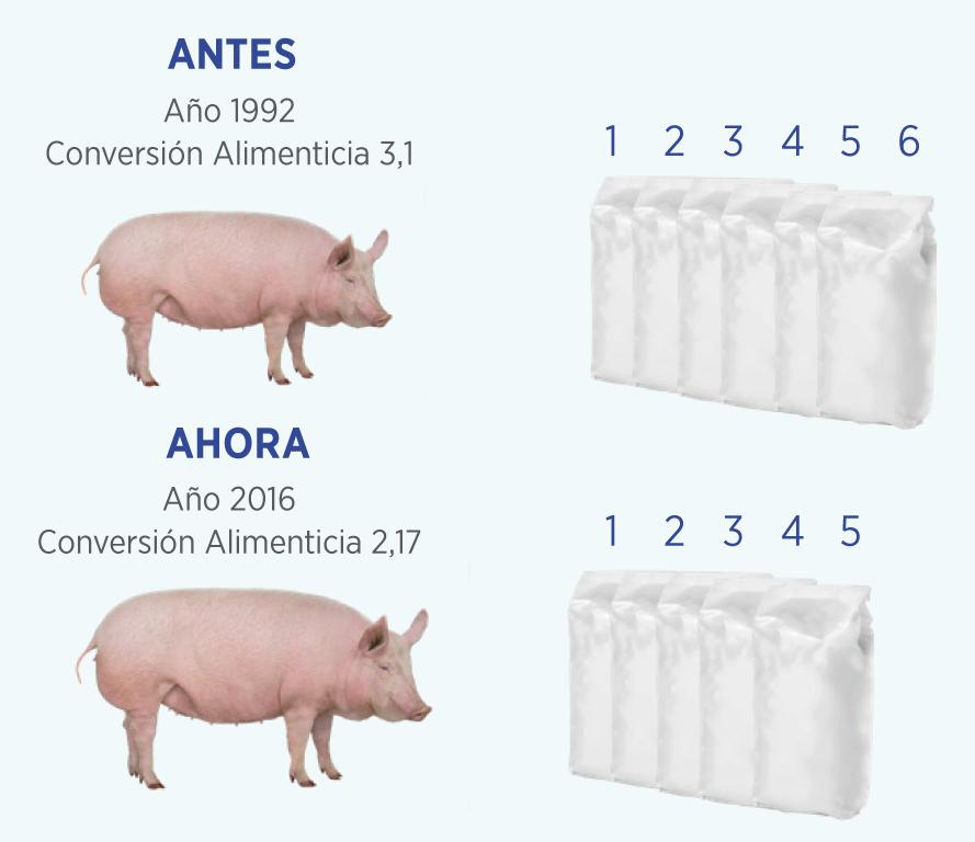 El camino hacia la sostenibilidad en granjas de porcino. Parte 2 – Indicadores de sostenibilidad