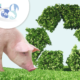 el camino hacia la sostenibilidad en granjas de porcino. Parte 2 - Indicadores de sostenibilidad